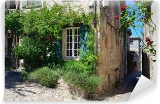 Vinylová Fototapeta Vaison la Romaine, Provence