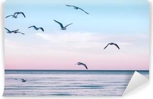 Vinylová Fototapeta Velká skupina hejno racků na mořské vody v jezeře a létání na obloze na západ slunce, tónovaný s Instagram retro bederní filtry, film efekt