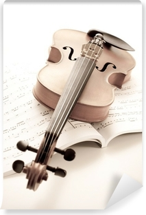 Vinylová Fototapeta Violine
