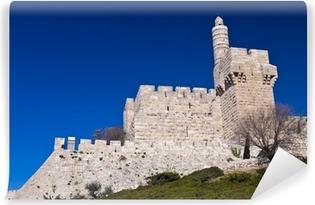 Fototapeta winylowa Wieża Dawida