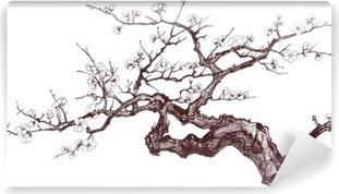 Fototapeta winylowa Wiśnia