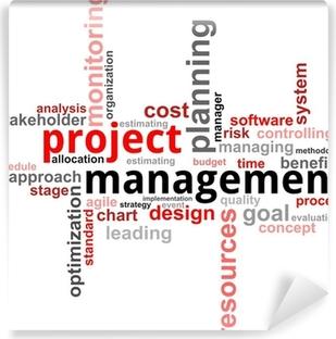 Obraz na ptnie wykres gantta pixers yjemy by zmienia fototapeta winylowa word cloud project management ccuart Images
