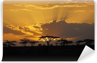 Fototapeta winylowa Zachód słońca w Afryce z ptakiem perching w