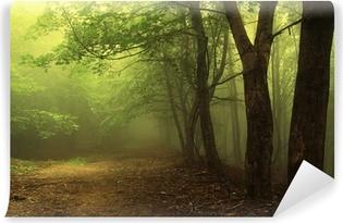 Vinylová Fototapeta Zelený les s mlhou