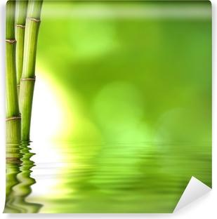 Fototapeta winylowa Zielone pędy bambusa na wodzie