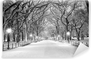 Fototapeta zmywalna Central Park, Nowy Jork w śniegu o świcie