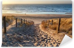 Fototapeta zmywalna Droga do morza o zachodzie słońca