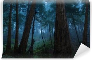 Fototapeta zmywalna Duży las sur sekwoja