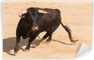 Fototapeta zmywalna Hiszpański byk