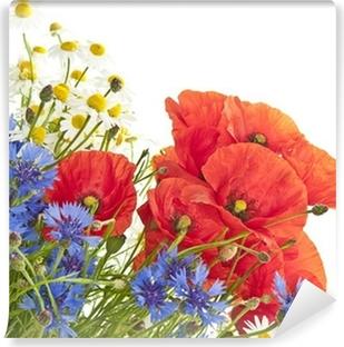 Fototapeta zmywalna Kwiaty polne
