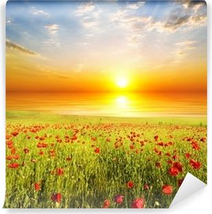 Fototapeta zmywalna Maki na tle nieba słońca