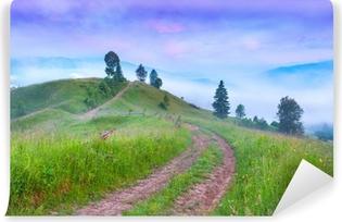 Fototapeta zmywalna Mglisty letni poranek w górskiej wiosce.