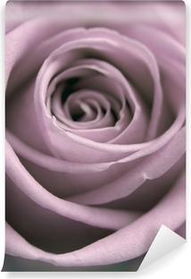 Fototapeta zmywalna Pastelowych róży