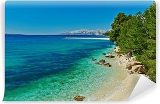 Fototapeta zmywalna Piękne Morze Adriatyckie, zatoka z sosnami w Chorwacji