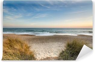 Fototapeta zmywalna Wydmy piaskowe