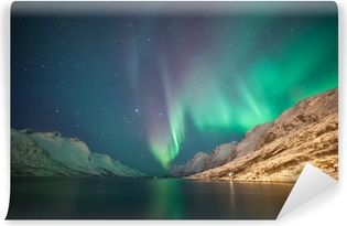 Fototapeta winylowa Zorza polarna, Ersfjordbotn, Tromso, Norwegia