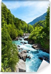 Fototapeta winylowa Żywe szwajcarski krajobraz z czystego strumienia, rzeki