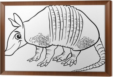 armadillo animal coloring pages. armadillo animal cartoon coloring page Framed Canvas Wall Mural  Pixers We