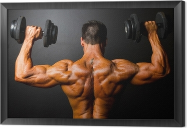 rear view of bodybuilder training with dumbbells Framed Canvas