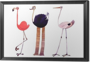 Watercolor bird set. Flamingo,ostrich,stork hand painted illustration Framed Canvas