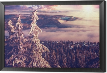 Winter in Norway Framed Canvas