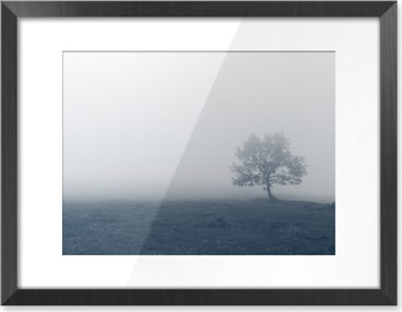 solitary tree with fog Framed Picture