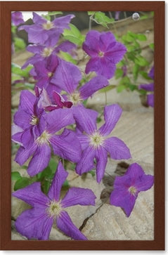 Beautiful purple bell flowers wall mural pixers we live to change mightylinksfo