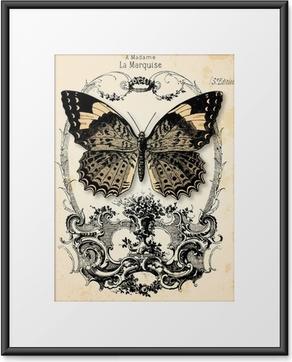 Fond papillon Framed Poster