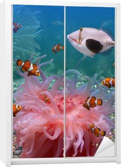 Tropiske fisk Garderobe klistermærke
