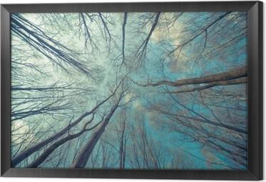 Gerahmtes Leinwandbild Bäume Web-Hintergrund