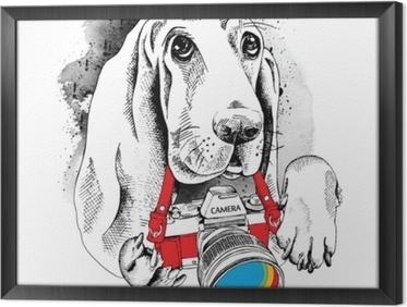 Gerahmtes Leinwandbild Das Poster mit dem Bild des Hundes mit der Kamera. Vektor-Illustration
