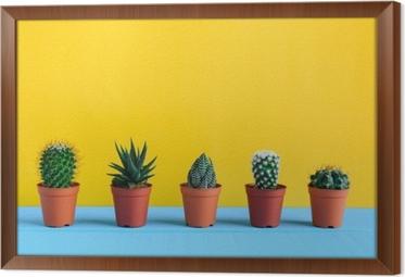 Gerahmtes Leinwandbild Kaktus auf dem Schreibtisch mit gelbem wal