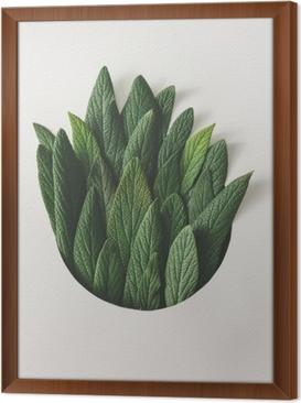 Gerahmtes Leinwandbild Kreative minimale anordnung von grünen blättern. Naturkonzept. flach liegen.