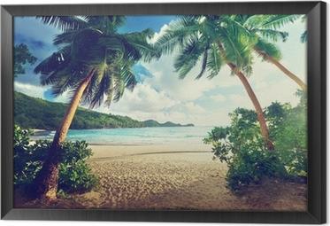 Gerahmtes Leinwandbild Sonnenuntergang am Strand, Mahe Island, Seychellen