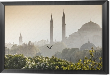 Gerahmtes Leinwandbild Sultanahmet Camii / Blue Mosque, Istanbul, Turkey
