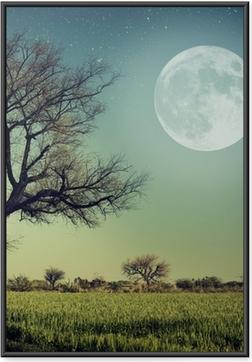 Gerahmtes Poster Natur-68