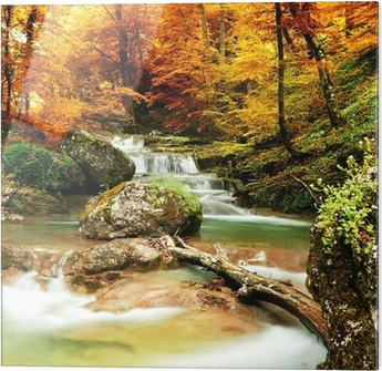 Glasbild Autumn creek Wald mit gelben Bäume