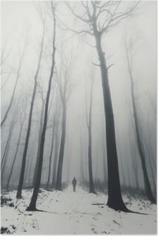 HD Poster Kışın uzun boylu ağaçlar ormanda adam