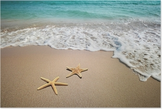 HD Poster Twee zeester op een strand