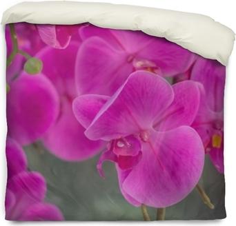 Housse de couette Fond de fleur d'orchidée artificielle