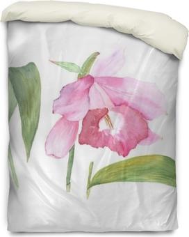 Housse de couette Illustration botanique aquarelle croquis de fleur de cattleya rose sur fond blanc