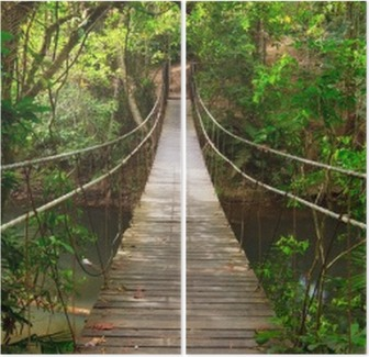 İki Parçalı Orman, Khao Yai Milli park, Tayland Köprü'den