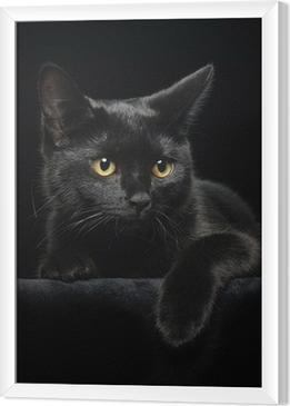 Sort kat med gule øjne Indrammet fotolærred