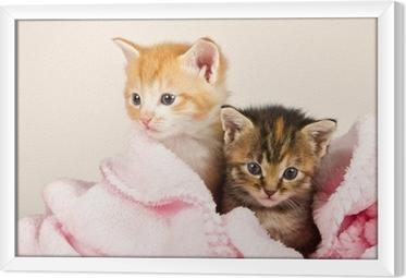To killinger i et lyserøde tæppe Indrammet fotolærred