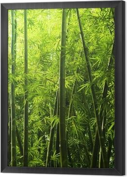 Ingelijst Canvas Bamboebos.