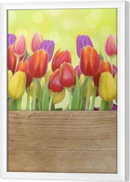 Ingelijst Canvas Tulpen met houten paneel