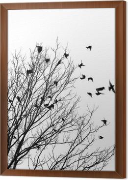 Ingelijst Canvas Vliegende vogels
