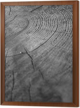 Ingelijst Canvas Wood