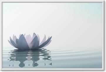 Ingelijste Poster Zen bloem loto in water