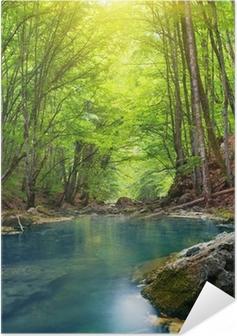 Joki vuoristometsässä. Itsestäänkiinnittyvä juliste